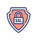 H3-SSL-100