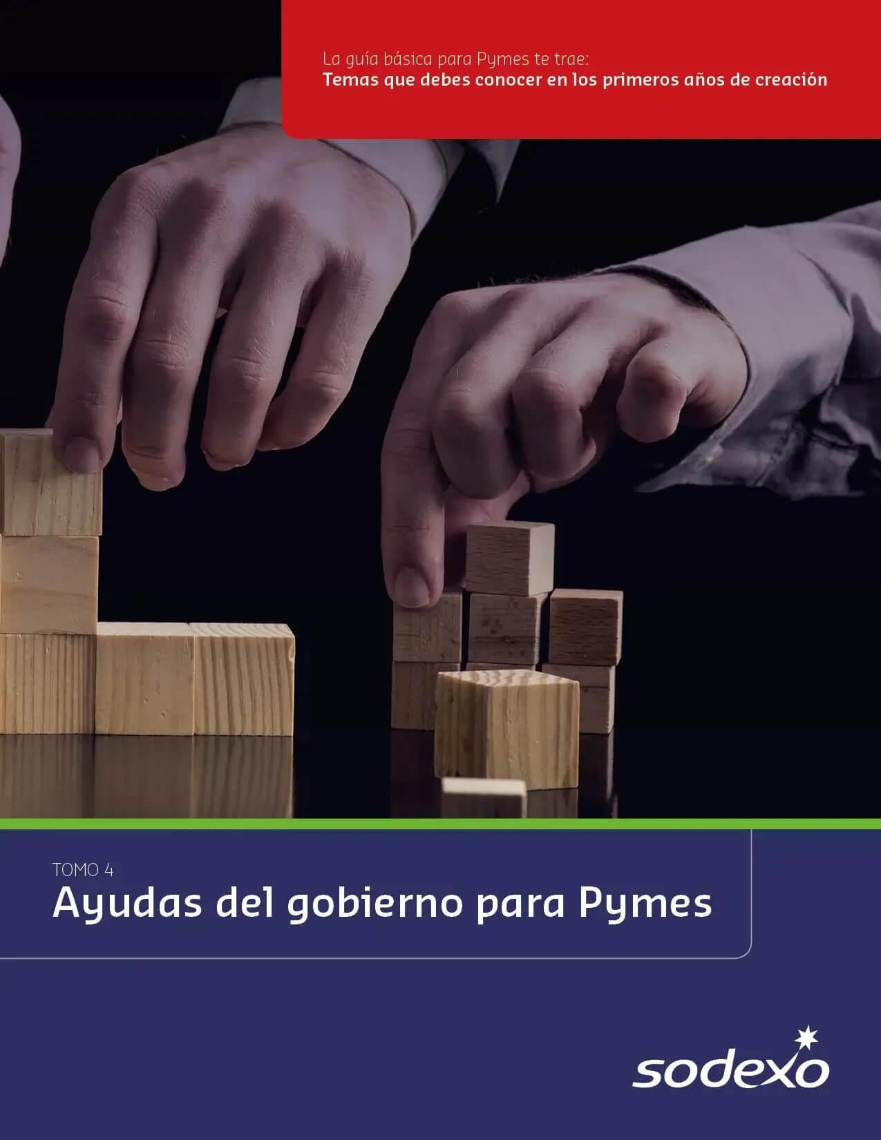 Ebook Pymes TOMO 4 Portada
