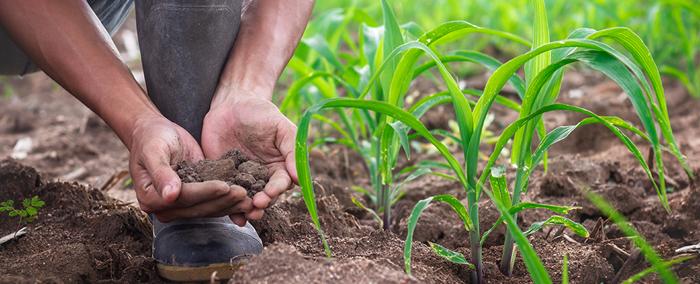 h2-ventajas-contrato-agricola